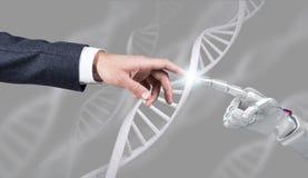 De robotachtige en menselijke ketting van DNA van handaanrakingen het 3d teruggeven Stock Afbeelding