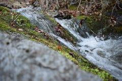 ` de roches bleues de ` de parc naturel - Bulgarie, Sliven Image stock