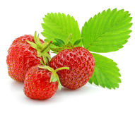 De rode aardbeivruchten met groen doorbladeren geïsoleerd Royalty-vrije Stock Foto's