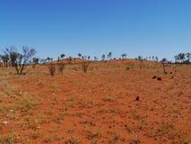 De rode aarde van het Australische binnenland Stock Foto's