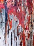 De rode Achtergrond van de Schors van de Gom Stock Foto