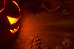 De rode achtergrond van griezelig Halloween met hefboomo lantaarn Stock Fotografie
