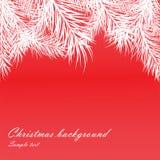 De rode achtergrond van Kerstmis met bont-boom takken Royalty-vrije Stock Foto