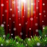 De rode achtergrond van Kerstmis met pijnboomtakken Stock Foto