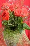 De rode achtergrond van rozenvalentine stock foto
