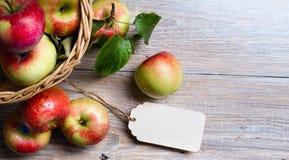 De rode appelen van Art Ripe Royalty-vrije Stock Fotografie