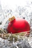 De rode bal van Kerstmis Royalty-vrije Stock Fotografie