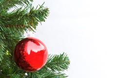 De rode bal van Kerstmis en groene nette tak Royalty-vrije Stock Afbeelding