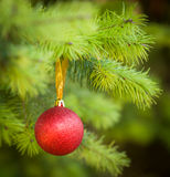 De rode bal van Kerstmis (Kerstmisbal) op Kerstboom Royalty-vrije Stock Fotografie
