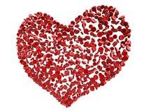 De rode cellen van het hartbloed Royalty-vrije Stock Foto