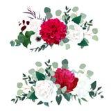 De rode dahlia, de witte pioen van Bourgondië, nam, hydrangea hortensia, anemoon toe stock illustratie