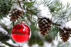 De rode decoratie van Kerstmis op snow-covered pijnboomboom in openlucht Stock Fotografie
