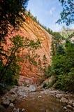 De rode die rotsmuren van Zion Canyon, tijdens worden genomen versmalt stijging bij Royalty-vrije Stock Fotografie