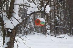 De rode die sneeuw van het schuurvogelhuis in de winterbos wordt behandeld royalty-vrije stock afbeeldingen