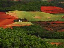 De rode droge grond van Yunnan Stock Foto's