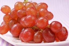 De rode druif van Sultanarozijn Royalty-vrije Stock Foto