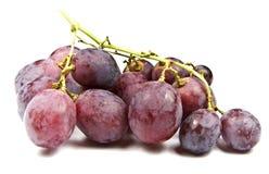 De rode druiven van de Bol Royalty-vrije Stock Fotografie