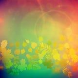 De rode en gele bladeren van Autumn Colorful royalty-vrije illustratie