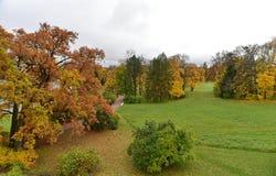 De rode en gele bomen zijn op het groene gras stock fotografie