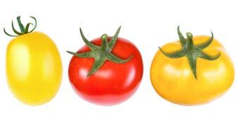 De rode en gele tomaten, isoleren op een wit close-up als achtergrond Royalty-vrije Stock Afbeeldingen