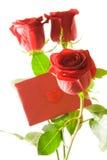 De rode envelop en rood nam toe stock fotografie