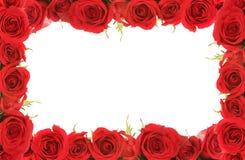 De Rode Frame Rozen van de valentijnskaart of van de Verjaardag Stock Afbeeldingen
