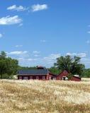 De rode Gebouwen van het Landbouwbedrijf Stock Foto