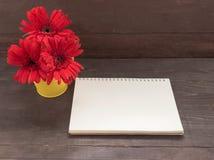 De rode gerberabloemen zijn in de bloempot, op houten backgrou Stock Afbeeldingen