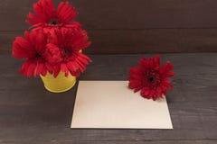 De rode gerberabloemen zijn in de bloempot, op houten backgrou Stock Foto