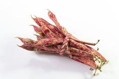 De rode gespikkelde boneschillen van Oktober bonden met streng, luchtdiemening, op wit wordt geïsoleerd stock afbeelding