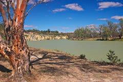 De rode gom van de rivier Stock Afbeeldingen
