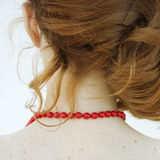 De rode halsband. Achtermening. stock afbeeldingen