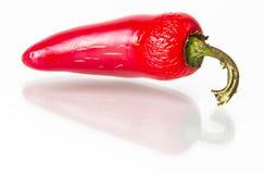 De rode hete peper van Jalapeno Stock Afbeeldingen