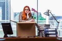 De rode hoofdvrouw die zich aan nieuw bureau bewegen die haar bezittingen inpakken stock afbeelding