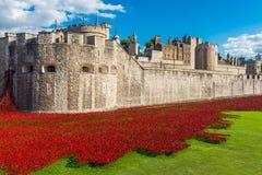 De rode installatie van de papaverskunst bij Toren van Londen, het UK Stock Foto's