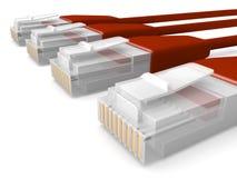 De rode Kabels van het Netwerk Stock Afbeeldingen