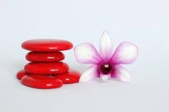 De rode kiezelstenen schikten in Zen-levensstijl met een twee kleurenorchidee op de rechterkant op een witte achtergrond Royalty-vrije Stock Afbeelding