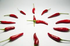De rode klok van de Spaanse peperpeper Stock Foto's
