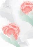 De rode lentebloemen op een zwarte achtergrond Royalty-vrije Stock Foto