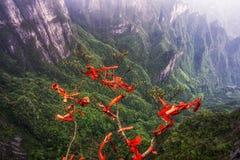 De rode linten tianmen berg Royalty-vrije Stock Foto's