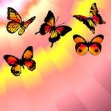 De rode lucht van vlinders stock illustratie