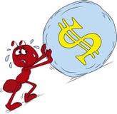 De rode mier van Sisyphus Stock Afbeelding