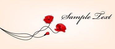 De rode mooie papaver bloeit kaart Stock Foto
