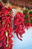 De rode Peper van Chili Royalty-vrije Stock Afbeeldingen