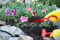 De rode plastic harken en de peddels in hun dienen gele rubberhandschoenen in, de lentewerk die ter plaatse, plantend bloemen het royalty-vrije stock foto