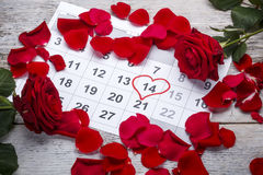 De rode rozen leggen op de kalender Stock Afbeeldingen