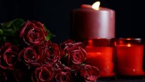 De rode rozen sluiten omhoog stock video