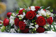 De rode rozen van bruiden stock foto