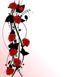 De rode rozen van de valentijnskaart Stock Afbeeldingen