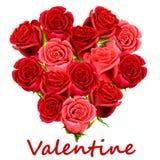 De rode rozen van de valentijnskaart Royalty-vrije Stock Foto